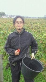 seiji kitazawa.jpg